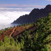 Loin du béton et hors des sentiers battus, nos belles adresses à Tenerife