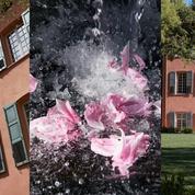 Louis Vuitton dévoile, à Grasse, la maison où se créent ses premiers parfums