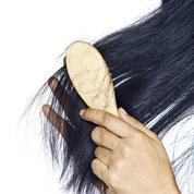 Chute de cheveux : comment faire face à ce problème passager ou chronique?