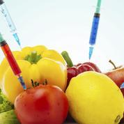 Fusion Bayer-Monsanto : sera-t-il encore possible de bien se nourrir?