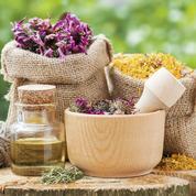 Florithérapie : les fleurs sont la meilleure arme contre le stress