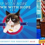 Grumpy Cat : les 10 choses qui le mettent de mauvais poil