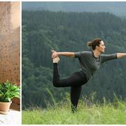 The Green Shelters, la retraite yoga itinérante d'un nouveau genre