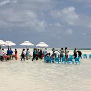 Alphonse Island, déjeuner dans l'eau des Seychelles