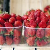 C'est la saison des fraises ! Trucs et astuces pour bien les utiliser selon les variétés
