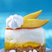 Cheesecake glacé
