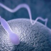 Le tabac réduit en cendres la qualité du sperme
