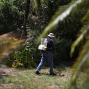 Le virus Zika s'installe aux États-Unis