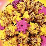 Mieux dépister le cancer du col avec l'ADN