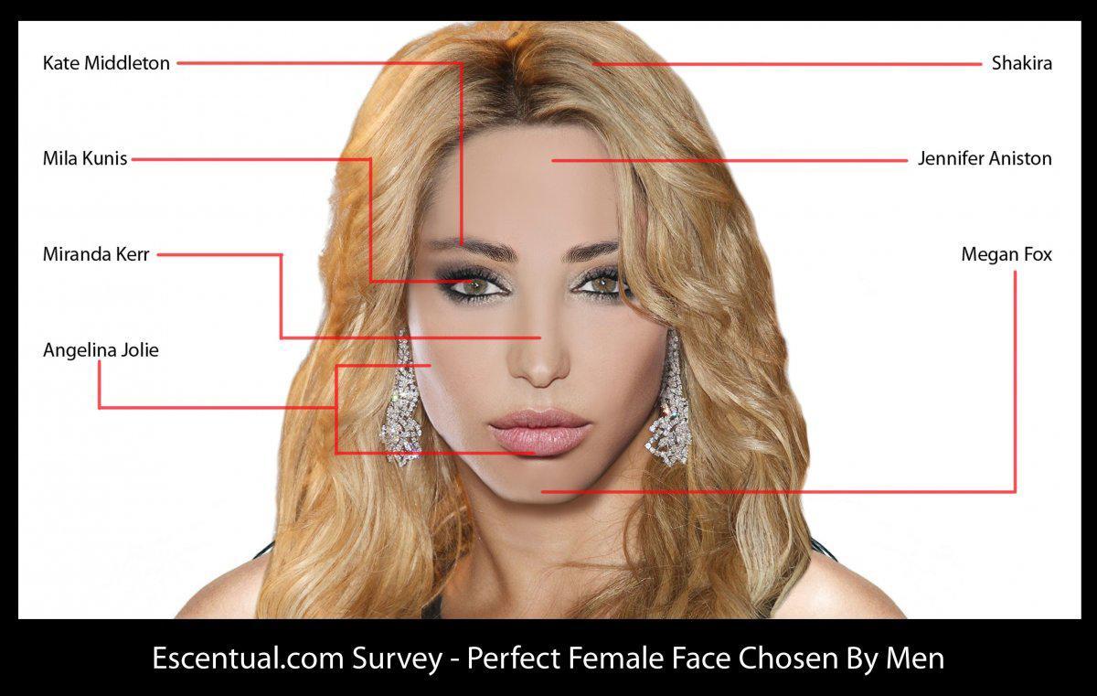 Recherche la femme parfaite
