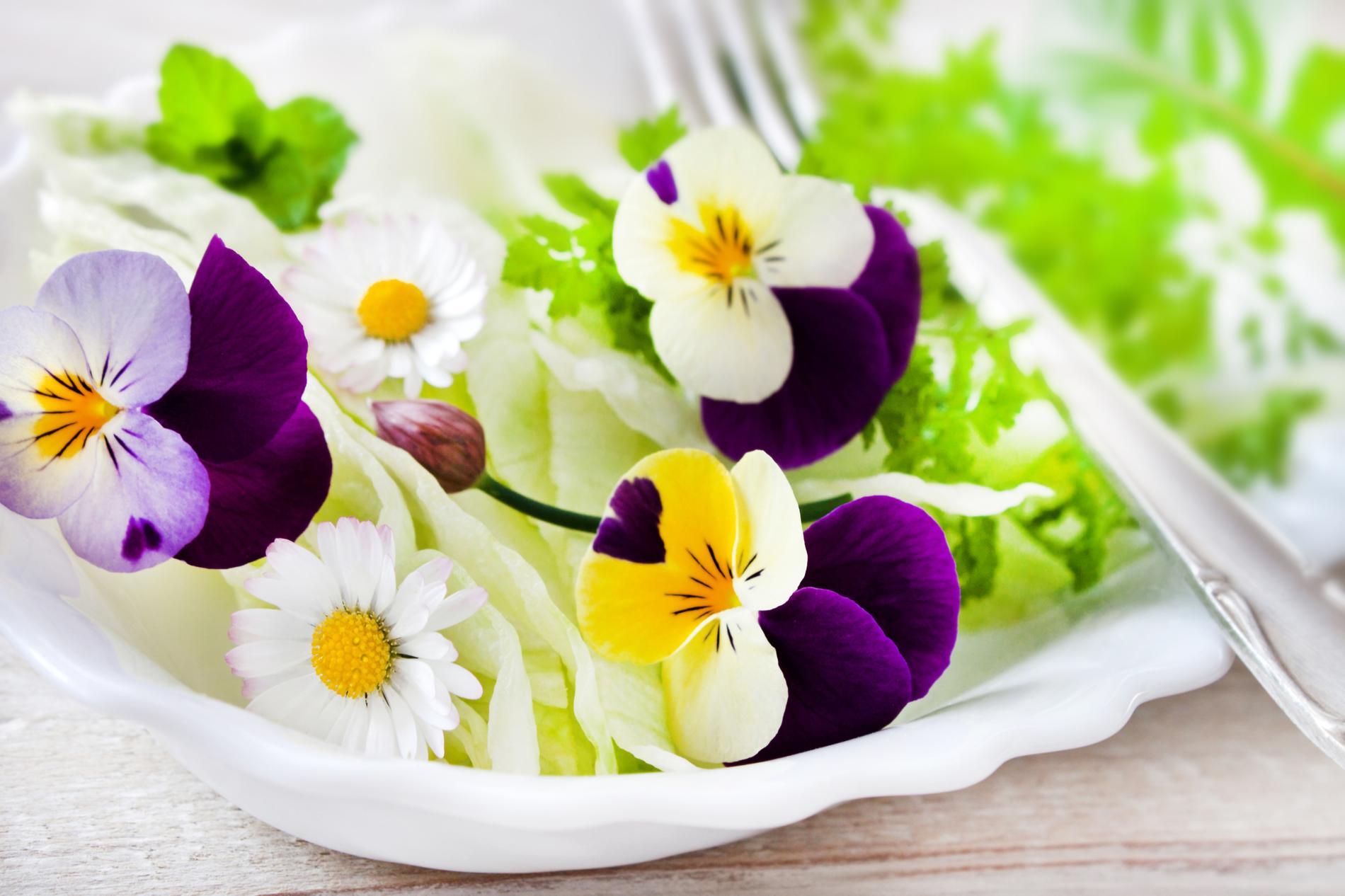 Ap ritif et amuse bouche recettes base de fleurs for Site de fleurs