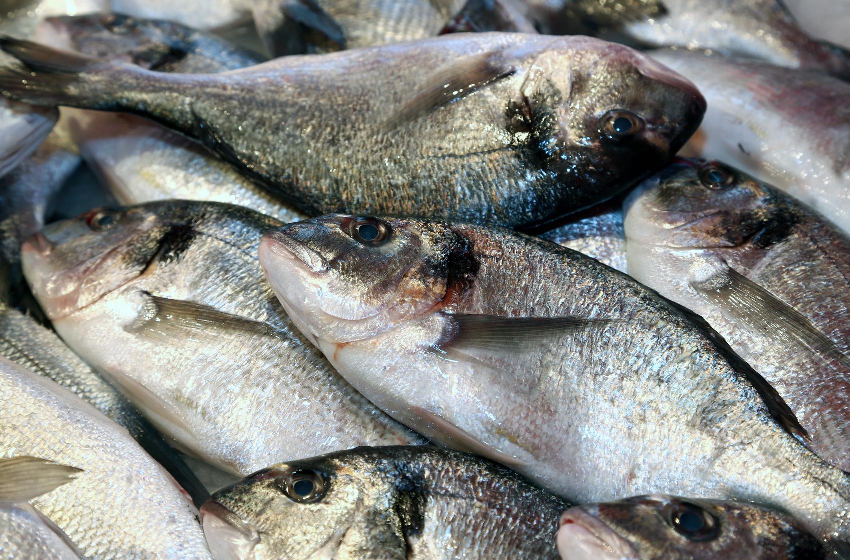Recettes poisson cuisine madame figaro - Cuisiner des pois mange tout ...