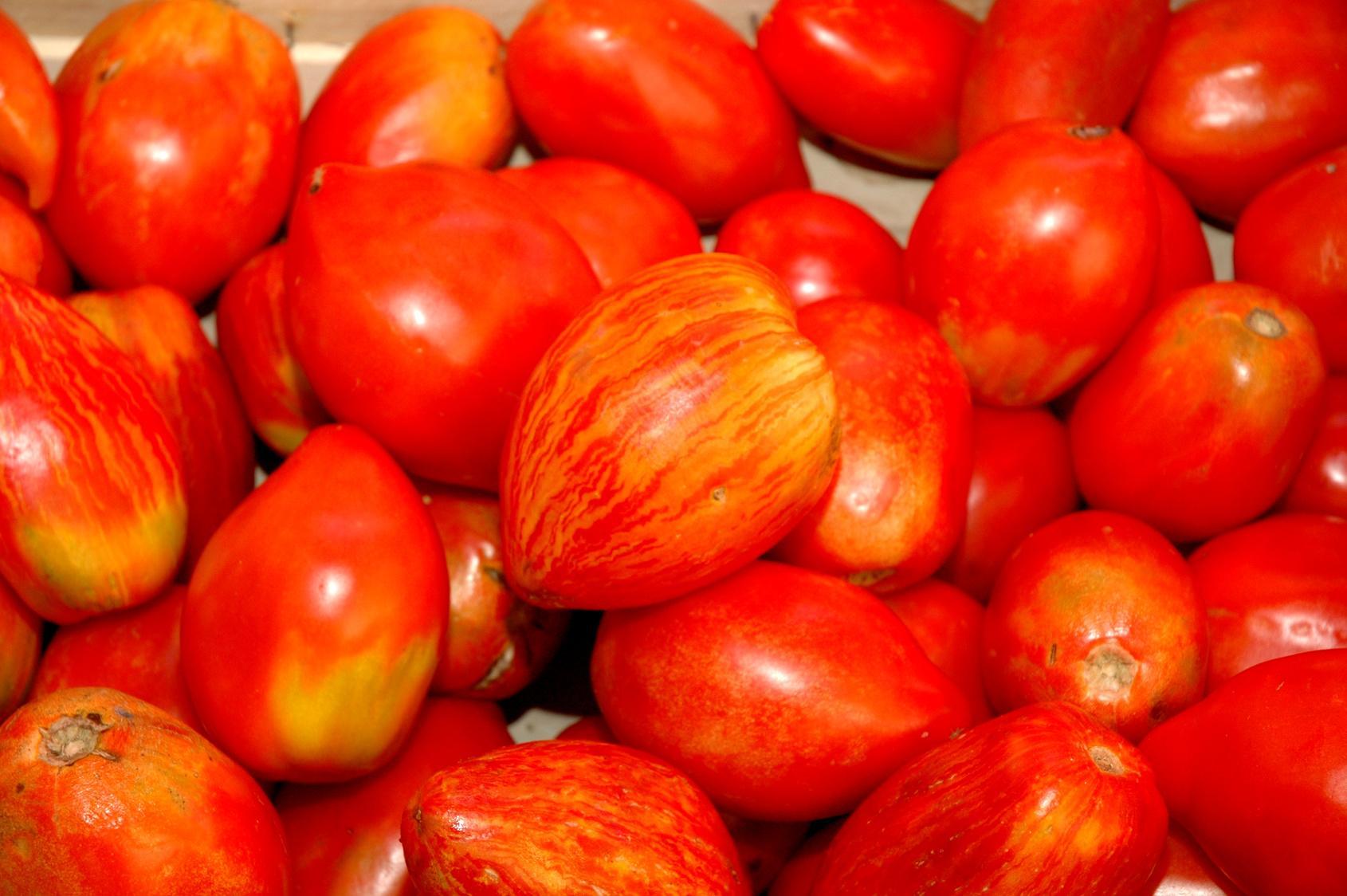 Recettes tomate c ur de b uf cuisine madame figaro - Cuisiner le coeur de boeuf ...