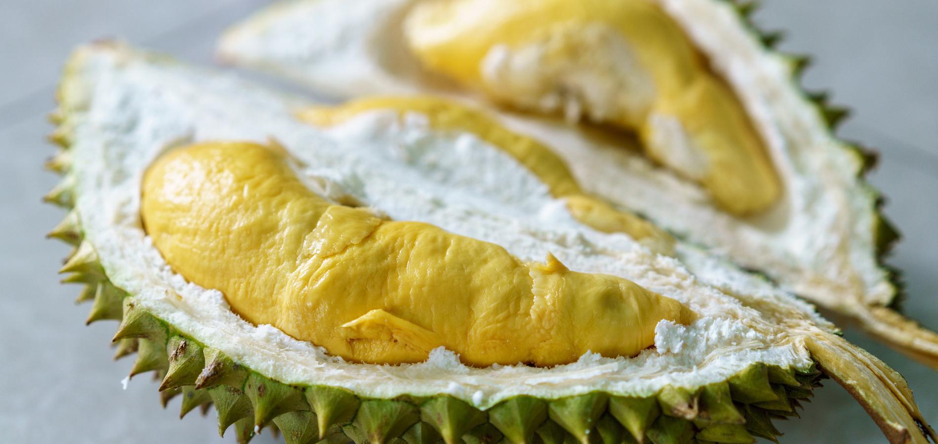 Le durian un fruit exotique malodorant et dangereux for Portent ses fruits