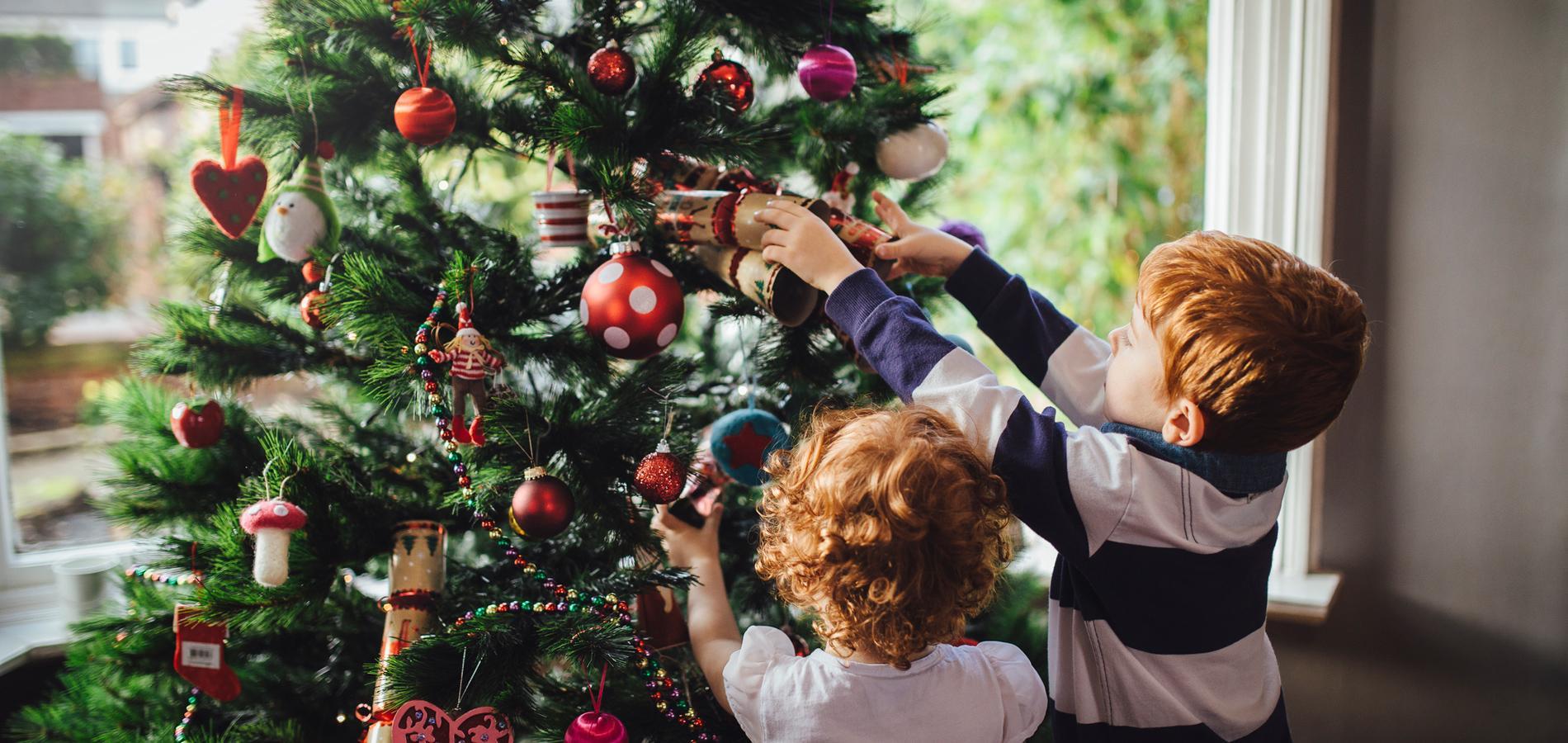 Les Conseils Pratiques Et Avises Pour Un Sapin De Noel Parfait