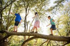 Le contact avec la nature rend les enfants plus intelligents