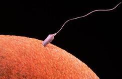Une maladie génétique transmise par don de sperme