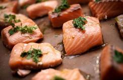 Le saumon, à consommer avec modération