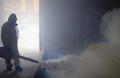 Dengue: les précautions à prendre