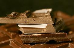 Le cacao stimule les capacités intellectuelles