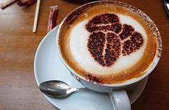 Le café est-il bon ou mauvais pour la santé?