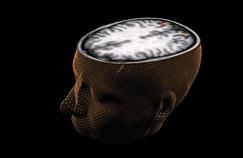 Spectaculaire avancée de la génétique du cerveau