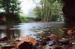 Médicaments, l'invisible pollution de l'eau