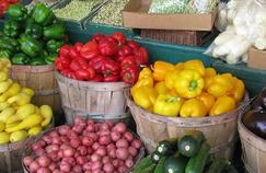 Manger bio préserve-t-il la santé ?