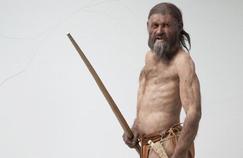 Qu'y avait-il dans l'estomac d'Ötzi ?