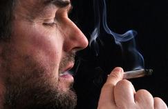 L'impact psychologique du cannabis