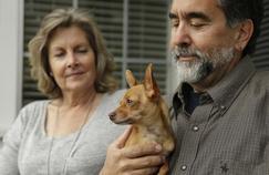 Attention aux maladies transmises par vos animaux