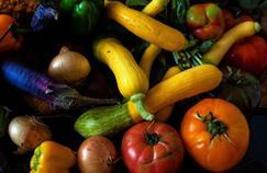 Le végétalisme est-il dangereux pour la santé des enfants ?