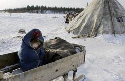 L'anthrax s'échappe du sol sibérien, faisant un mort