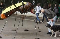 Zika: comment les athlètes olympiques français seront protégés