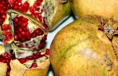Vieillissement : l'ambivalence des antioxydants