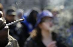 C'est dans le Sud que les jeunes consomment le plus de cannabis