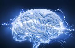 Les chercheurs en neurosciences ont «soif de capitaux»