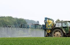 Pesticides: les risques pour les agriculteurs mieux évalués