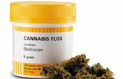 Cannabis vendu en pharmacie : «Ce serait une aberration»