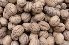 Les huiles végétales contre le cancer de la prostate