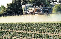 Europe: très peu de pesticides dans les aliments