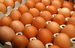 Distinguer l'allergie de l'intolérance alimentaire