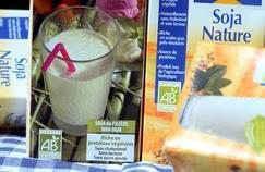 Pourquoi les laits végétaux sont inadaptés aux nourrissons
