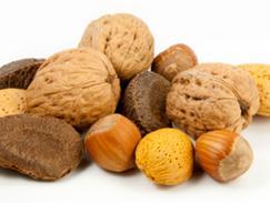 Noix fruit à coques
