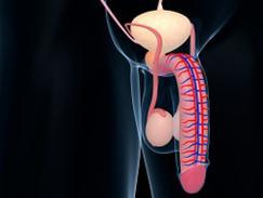 Prostatite bactérienne aiguë