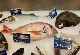 Les meilleurs restaurants de poissons et fruits de mer à Paris