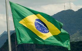 Une fleur au Brésil