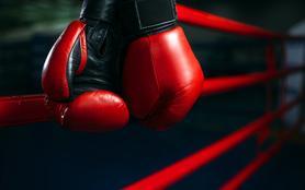 Championnat du monde de la WBA
