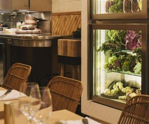 Restaurant Clover