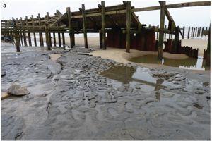 Sous le sable remué par une forte marée, des sédiments ancien.